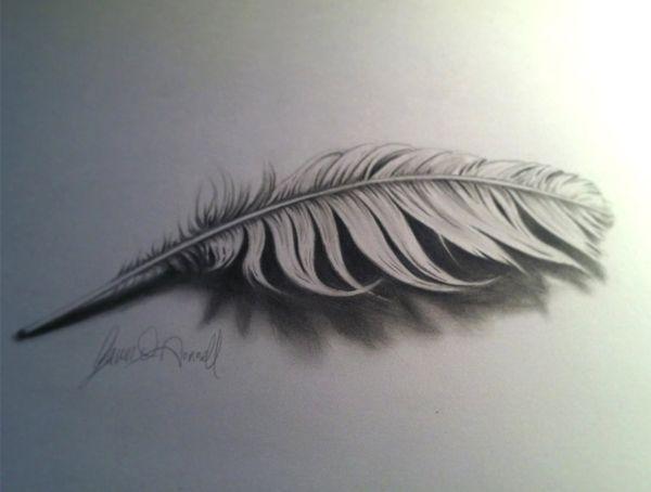 Anamorphic 3d drawings pencil drawings of nature3d
