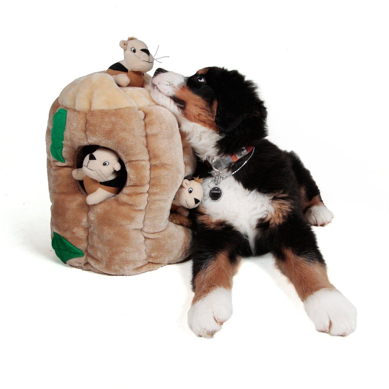 Outward Hound Kyjen 2657 Hideasquirrel Limited Edition Plush Dog