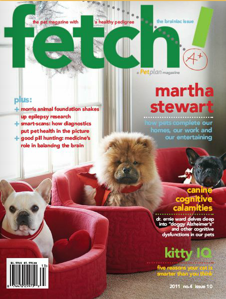 The Brainiac Issue Of Fetch Magazine From Petplan Pet