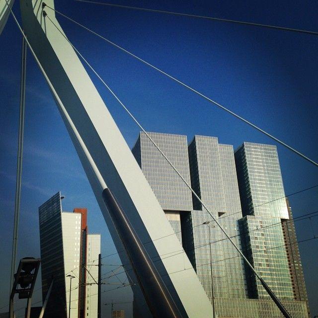 #Rotterdam.