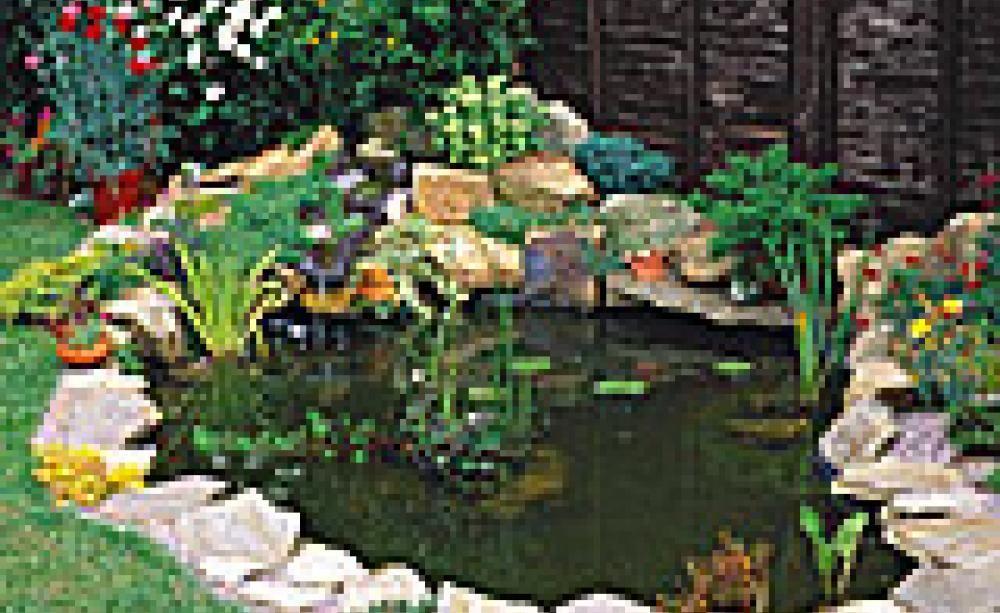 gartenteich richtig anlegen wassergarten pinterest garten teich und wasser im garten. Black Bedroom Furniture Sets. Home Design Ideas