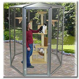 Walk-in SunCATcher Cat Cages, Outdoor Cat Enclosures, Cat