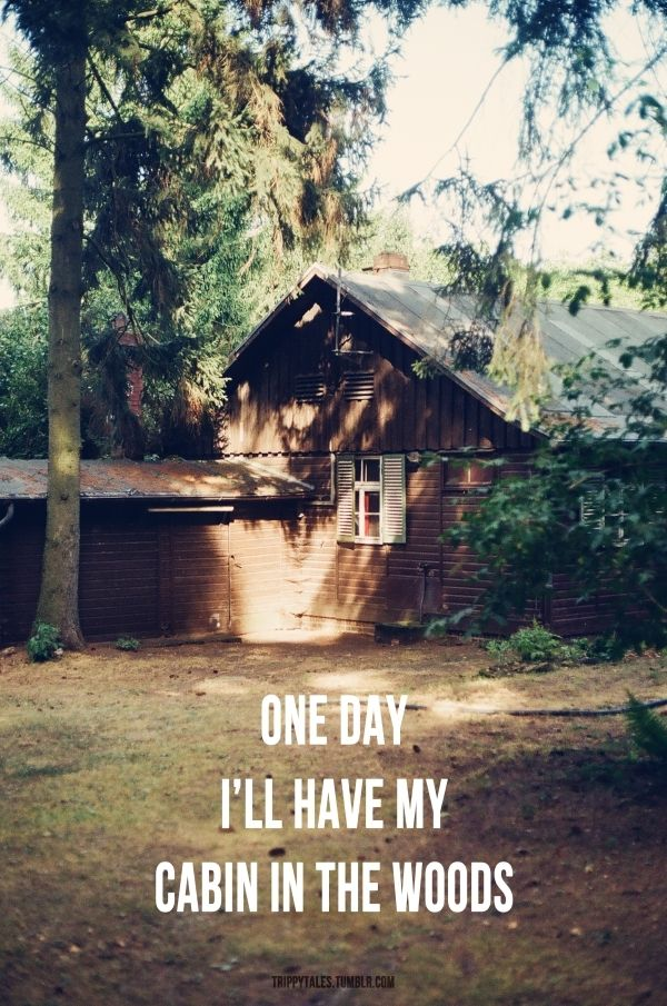 Or Camperim Not Picky I Just Want To Live In The Woods