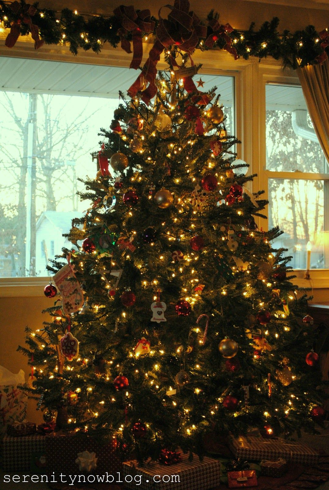Your real tree in that front window looks beautiful ...