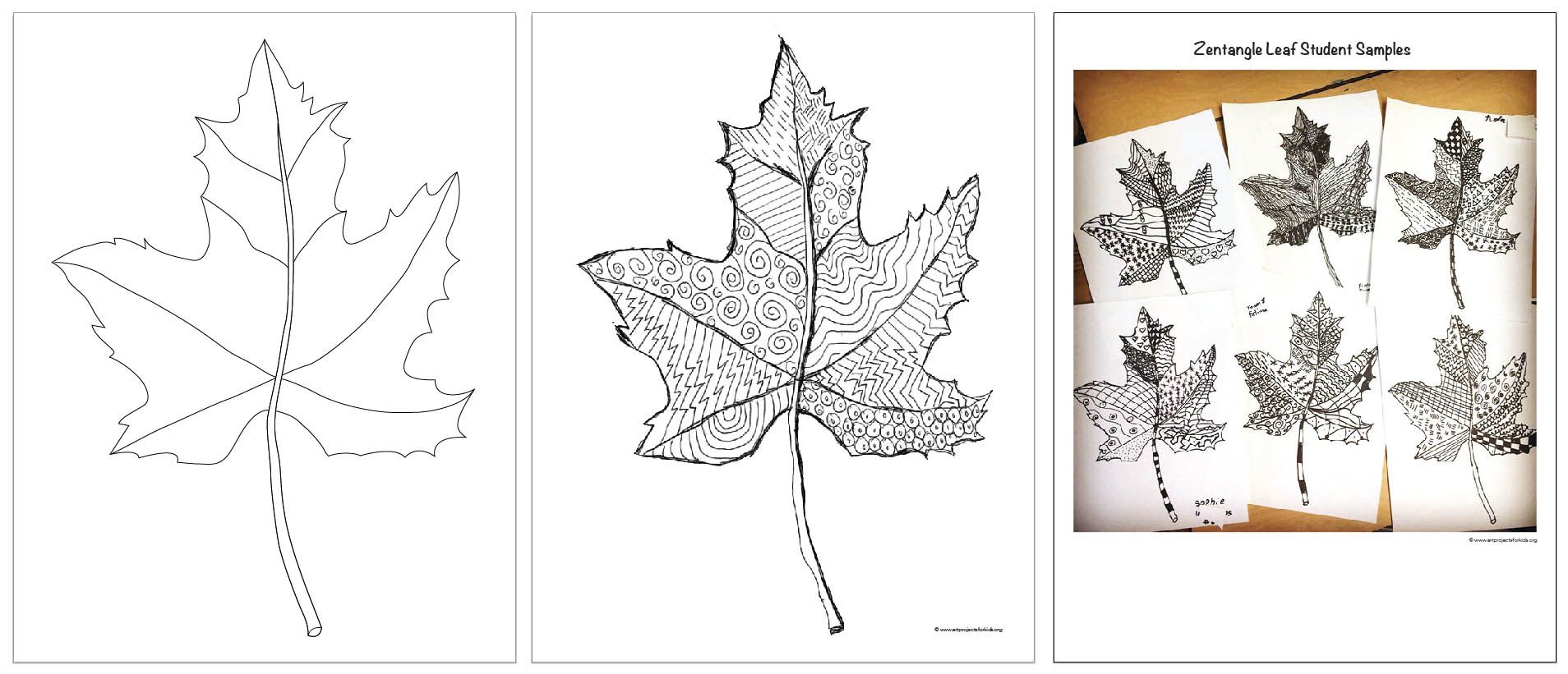 Zentangle Art Leaf Template Now With Finished Samples For Busy