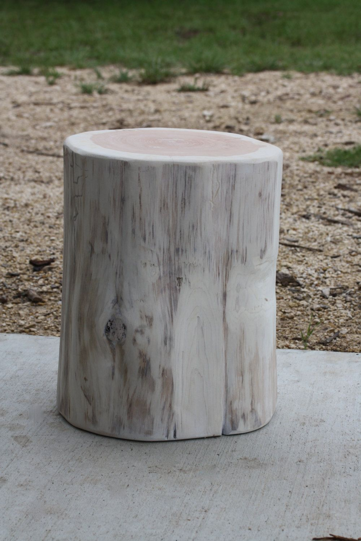 Tree Stump Nice Design