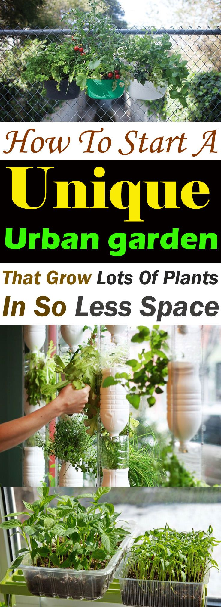 How To Start A Unique Urban Garden To Grow Lots Of Plants In So Less Space