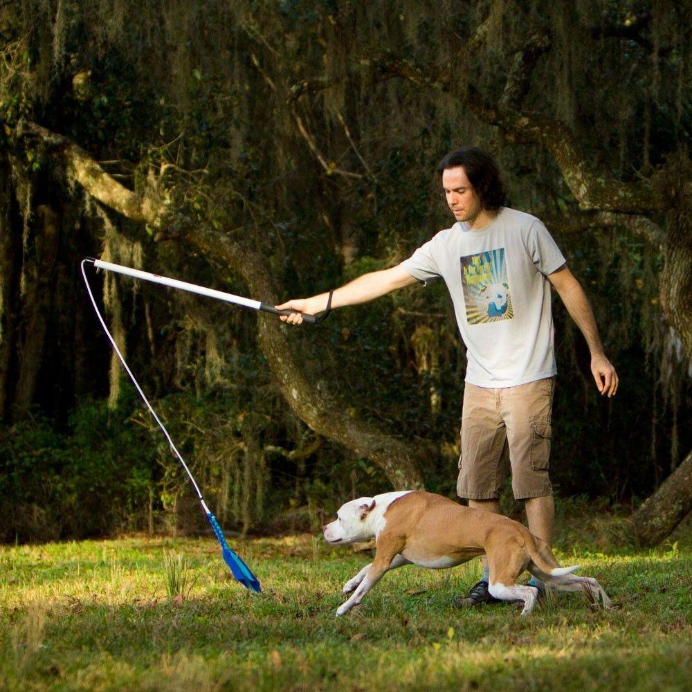 Squishy Face Studio Flirt Pole Hyperactive Dog Tough Dog Toys
