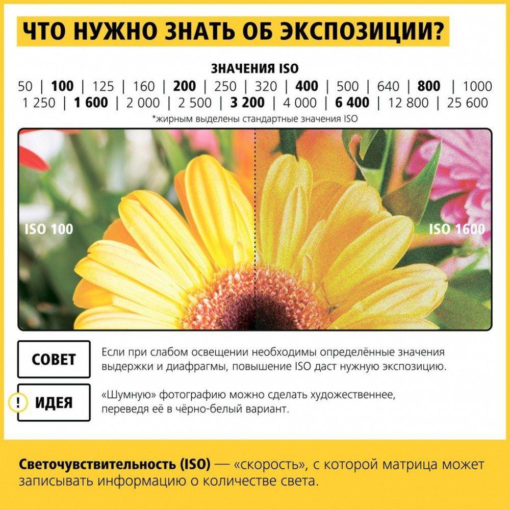 Идея от пользователя oli dmitrieva на доске «nikon ...