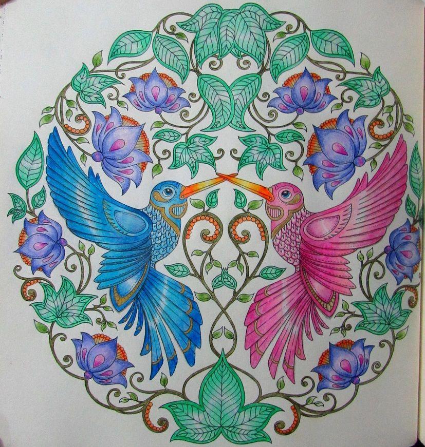 Passaros Que Colorir Do Jardim Secreto Fonte Jardimsecretoorg