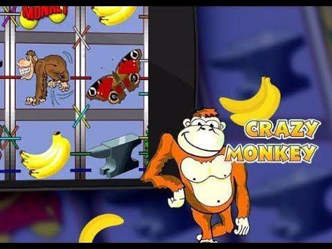 Игра фрукты и овощи играть бесплатно онлайн на игровых автоматах
