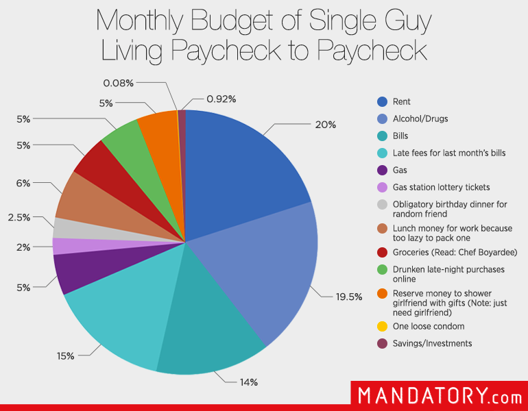 Single guy budget funny living paycheck to pie chart also rh pinterest