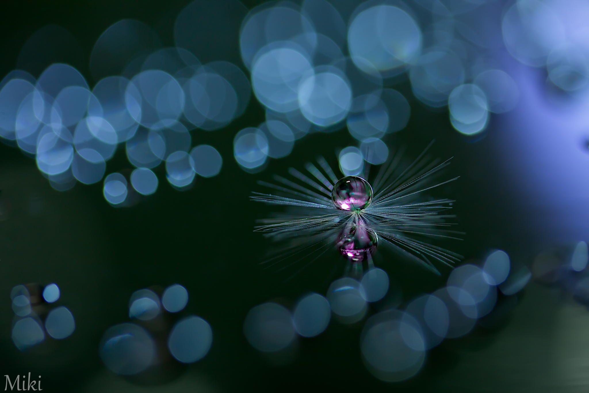 Mystic Pearl von Miki Asai auf 500px