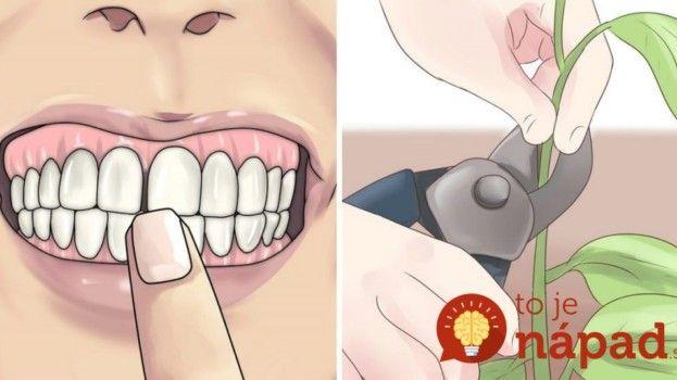 Boľavé zuby? Namiesto liekov vyskúšajte tieto rady starých mám!
