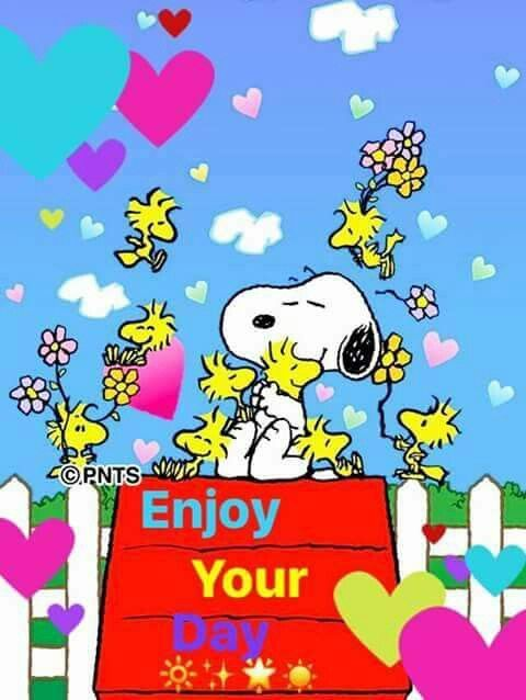 Snoopy and Woodstock.Enjoy your day puzzle. Good Morning Snoopy, Good Morning Greetings, Snoopy Images, Snoopy Pictures, Peanuts Cartoon, Peanuts Snoopy, Snoopy Und Woodstock, Birthday Wishes, Happy Birthday