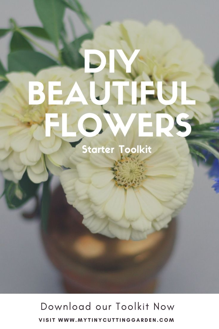 Learn to arrange flowers like a professional florist with this easy to use toolkit. Have fun!