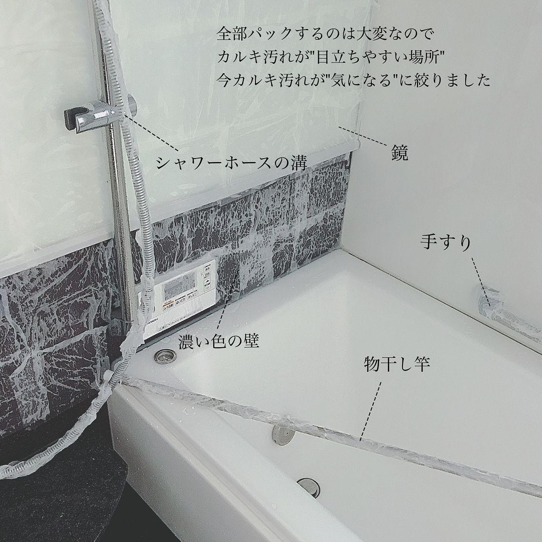 大掃除6日目 換気設備 天井 壁が終わったら次は小さな空間から順番に掃除していくと達成感があって掃除へのモチベーションが続くそうです というわけで 6日目は お風呂掃除 お風呂はアルカリ性のカルキ汚れと 酸性の皮脂汚れが混ざる場所 それぞれ効く