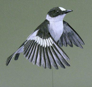 Johan Scherft - 3D Papercraft Templates Birds - website