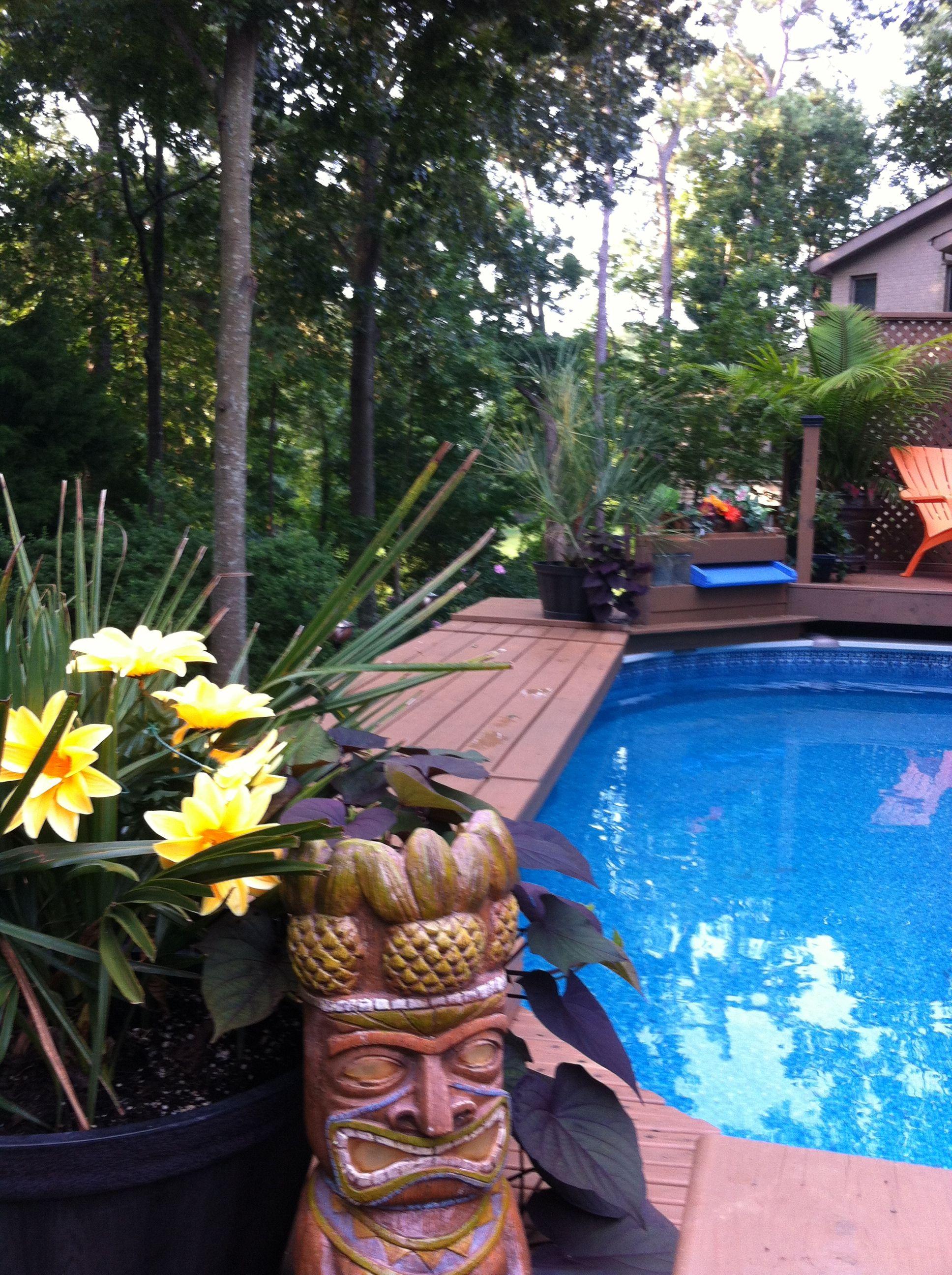 Pin By Bruce Kirkland On Mexico Joe Decks Around Pools Oval Pool Cool Deck