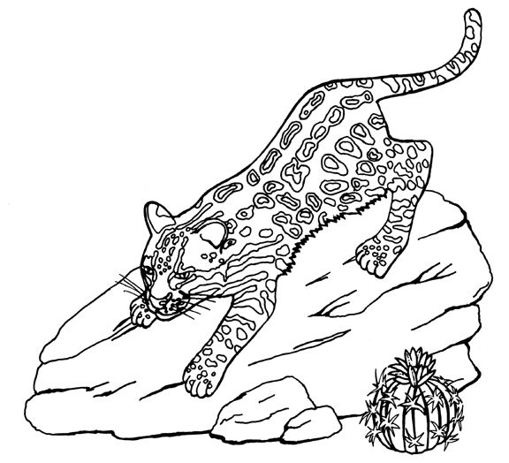 Labor Day Coloring Pages Ocelot Coloring Page Free Printable