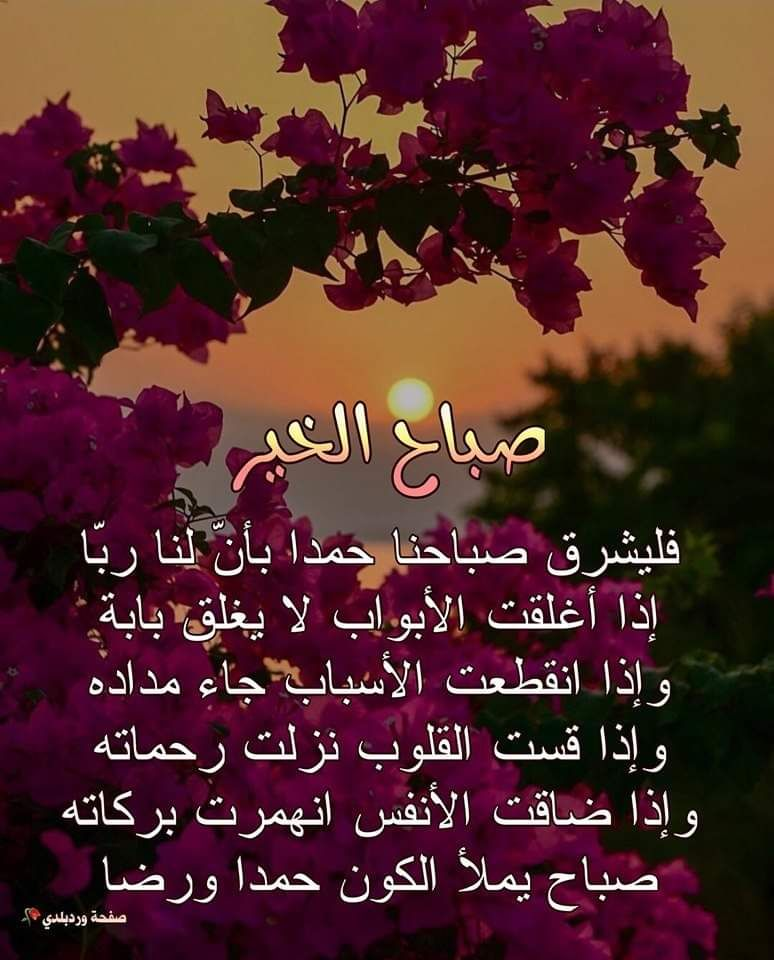 Pin By زهرة الأوركيد On صباح الخير Good Morning Arabic Wisdom Quotes Life Romantic Love Quotes
