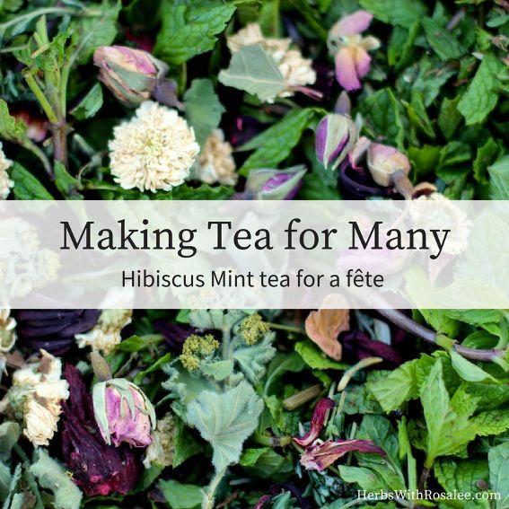 Hibiscus Tea Recipe in large quanities