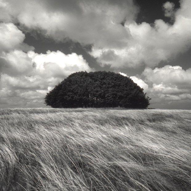 Photo Gallery 22 Exceptional Landscape Photos By Charlie Waite Landscape Photography Landscape Photos Landscape