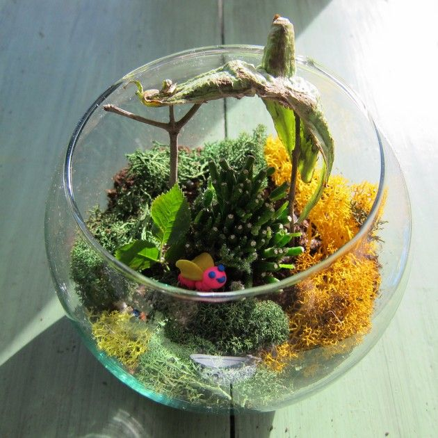 Cool Terrarium Container Gardens 19 Pics How To Make