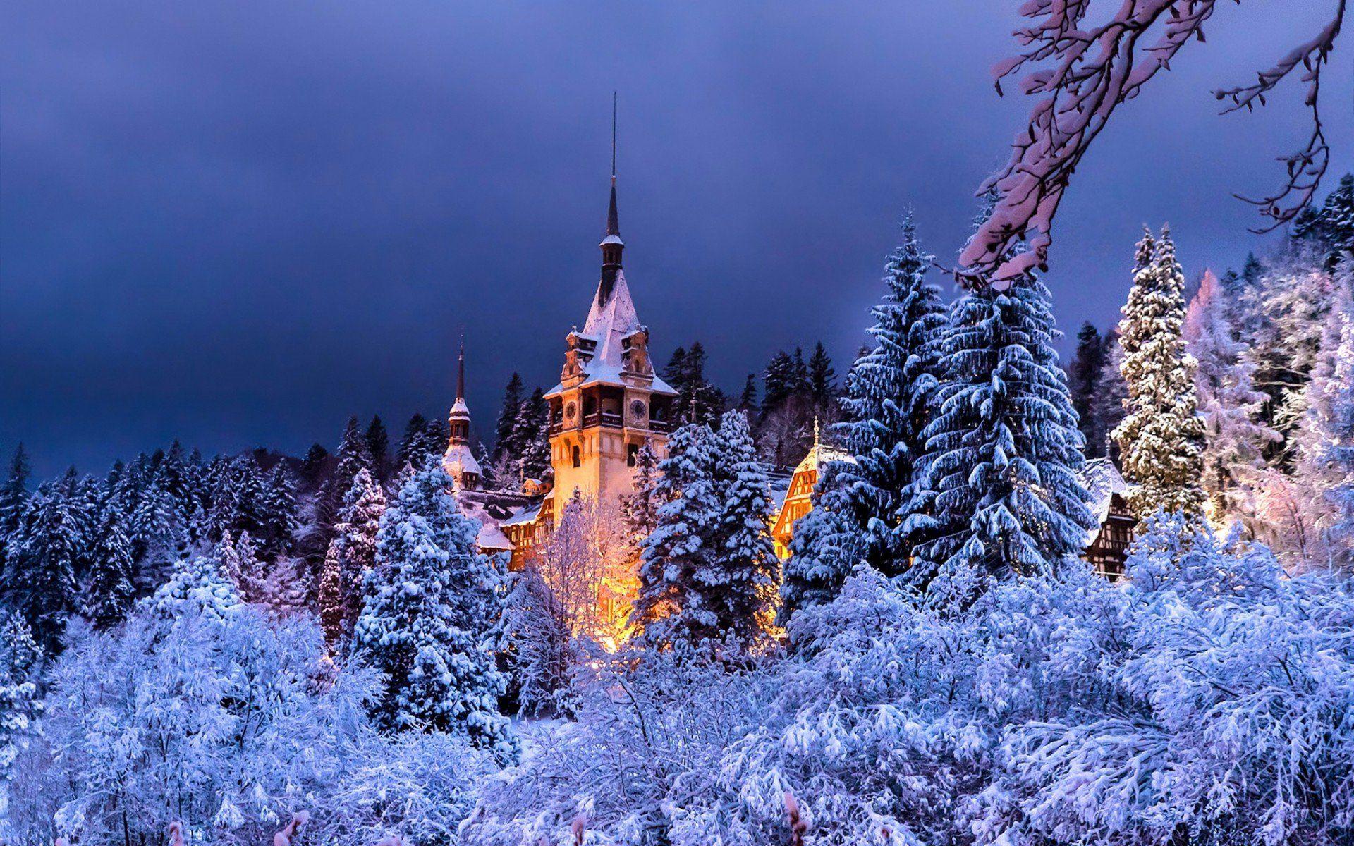 Romania Sinaia Peles Castle Winter | Замок пелеш, Румыния ...