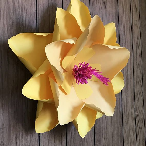 Hibiscus paper flower / Giant paper flower / large paper #giantpaperflowers Hibiscus paper flower / Giant paper flower / large paper #bigpaperflowers Hibiscus paper flower / Giant paper flower / large paper #giantpaperflowers Hibiscus paper flower / Giant paper flower / large paper #giantpaperflowers