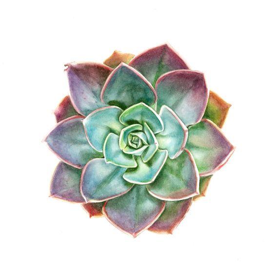 Plant Pot Painting Ideas Succulents