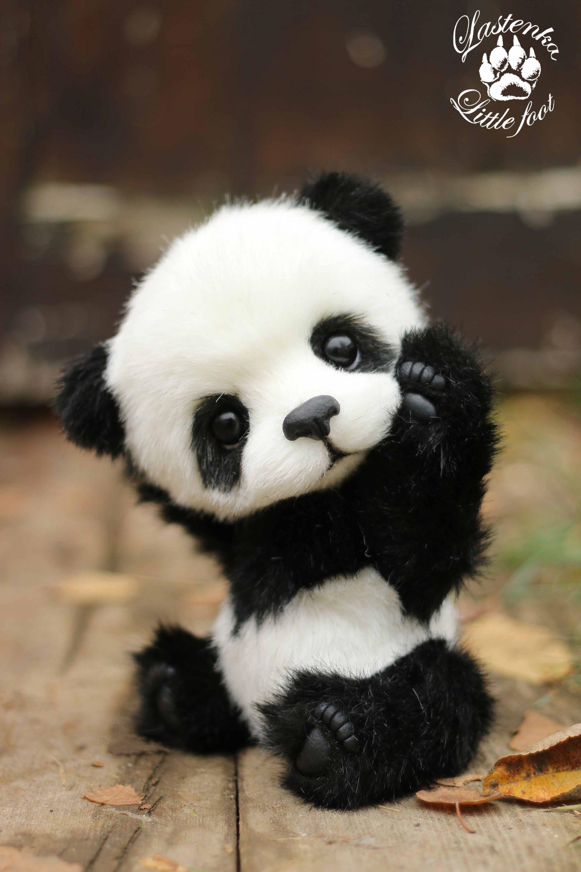 Pin On Adorable Pandas