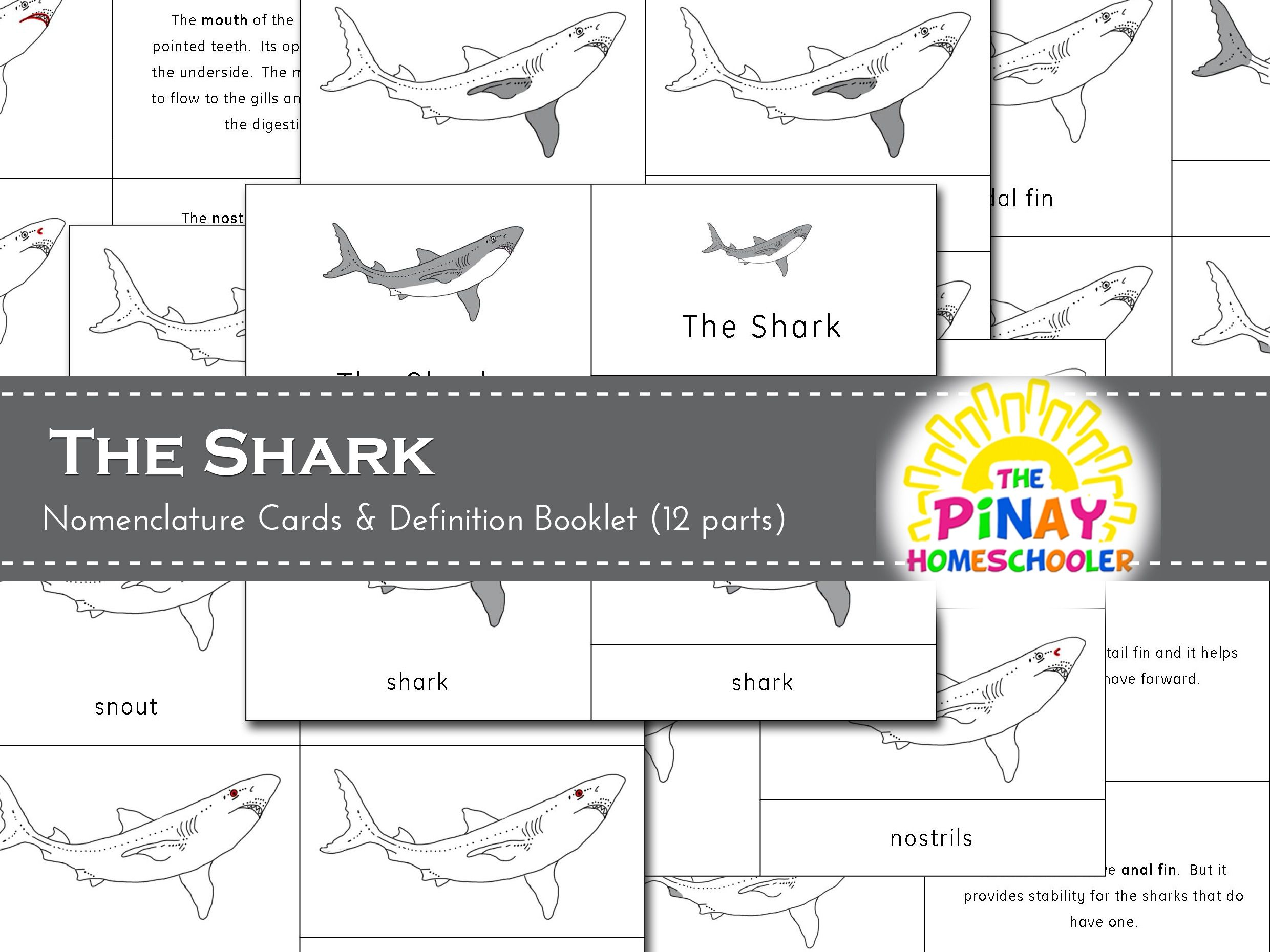 This file contains 12 parts of the Shark and consist of the following:- 12 picture cards- 12 labels- 12 control cards (picture with label)- activity sheets / worksheets- title cards