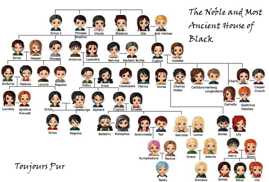 Black Family Tree By Jey Jey96 On Deviantart Harry Potter Family Tree Harry Potter Characters Harry Potter Jokes
