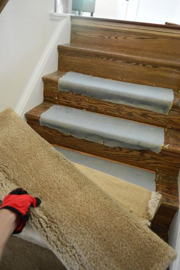 Removing Old Stair Carpet And 600 Staples Treppenteppich