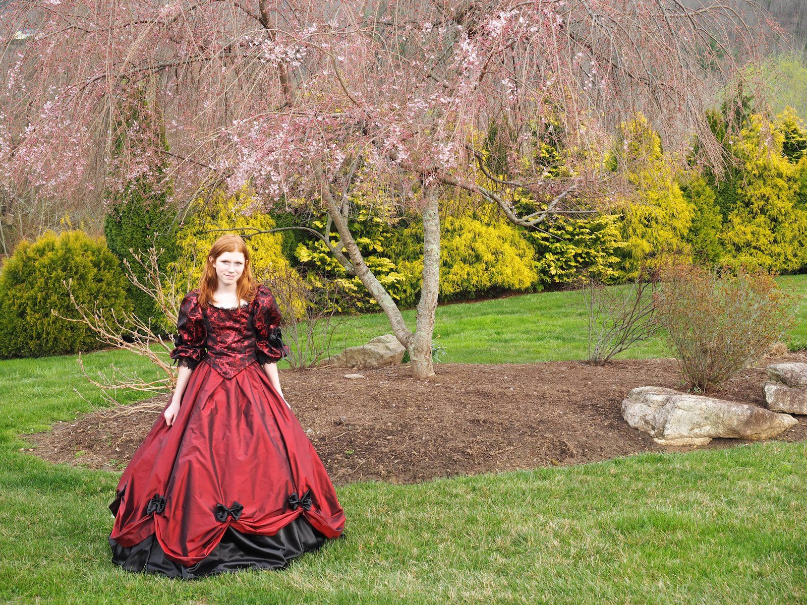 Red Dress And Cherry Tree Red Dress Dresses Winter Gowns
