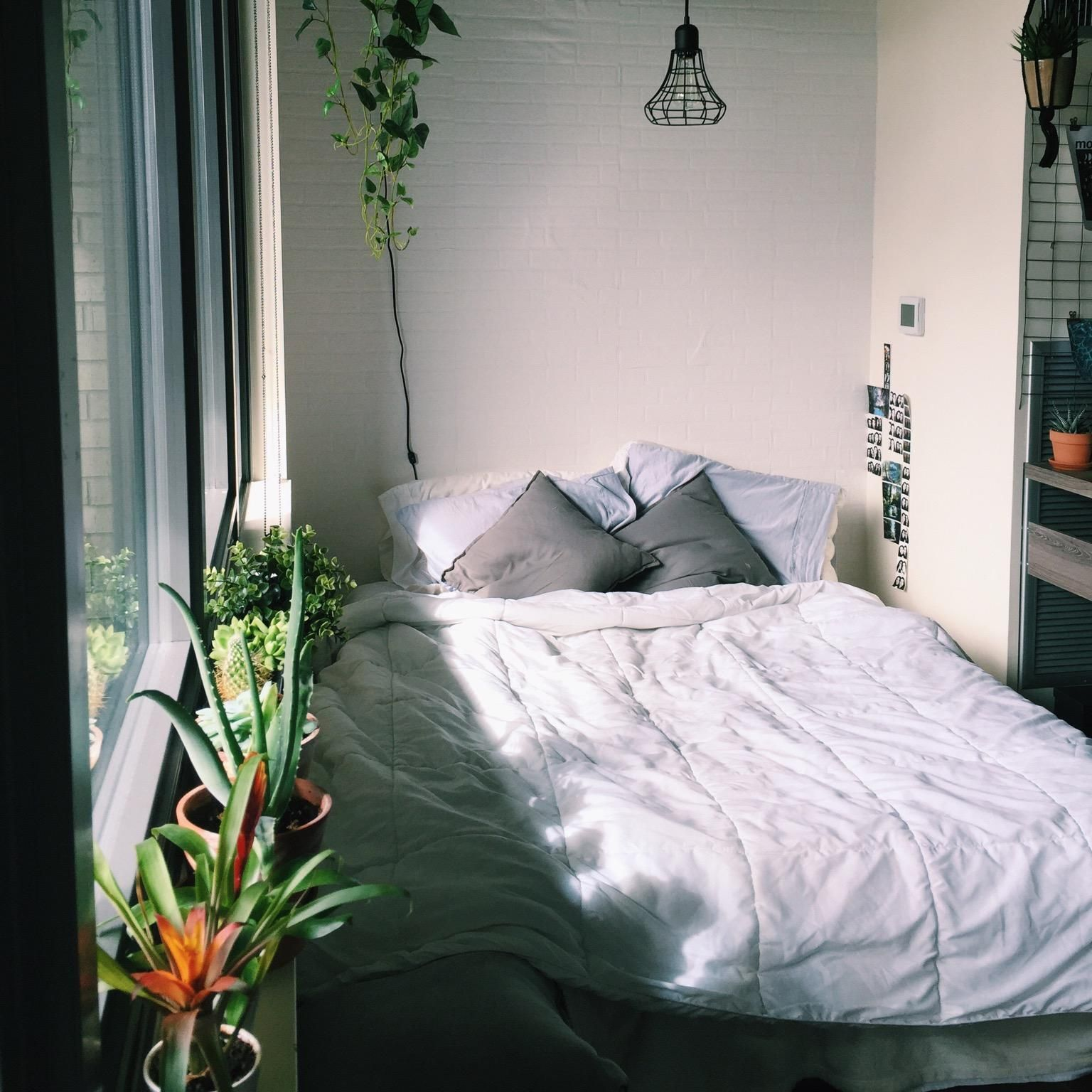 Virtual Dorm Room Design: Plants, Grey Pillows: IKEA - Bedding: Marshalls