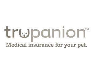 Petfirst Pet Insurance Vs Aspca Pet Insurance Pet Health Insurance Pet Insurance Reviews