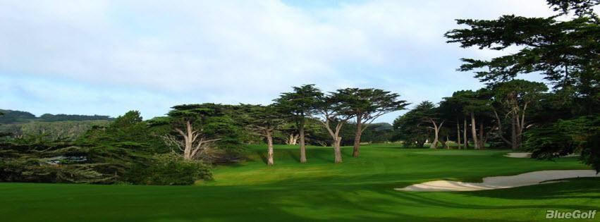 Tpc Harding Park Harding Park Golf Courses Golf Public Golf Courses