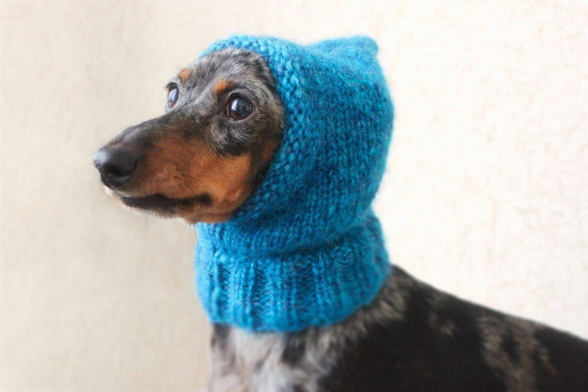 KNITTING PATTERN Small Dog Hat Mini Dachshund Hat Pet