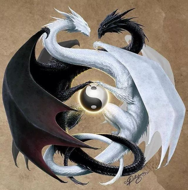 This Would Make A Cool Tattoo Tattoos Dragon Yin Yang