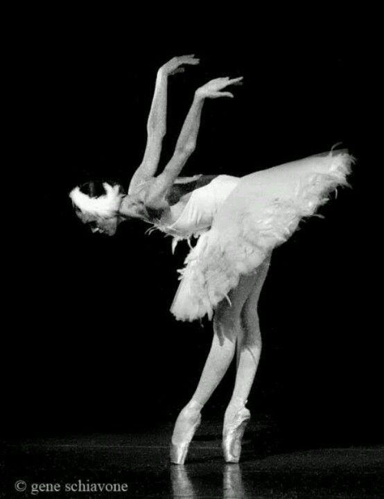 grace and elegance 3 バレエ写真 バレエ 写真