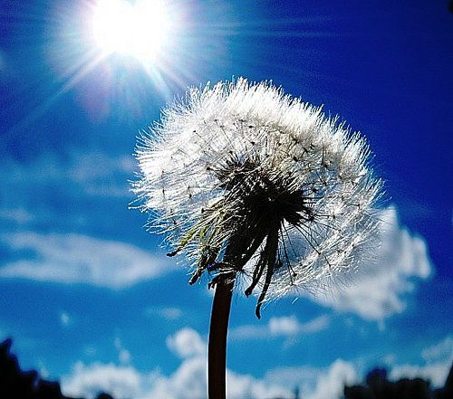 Like The Sun Shines Sky Pictures Nature Inspiration Beautiful Landscapes