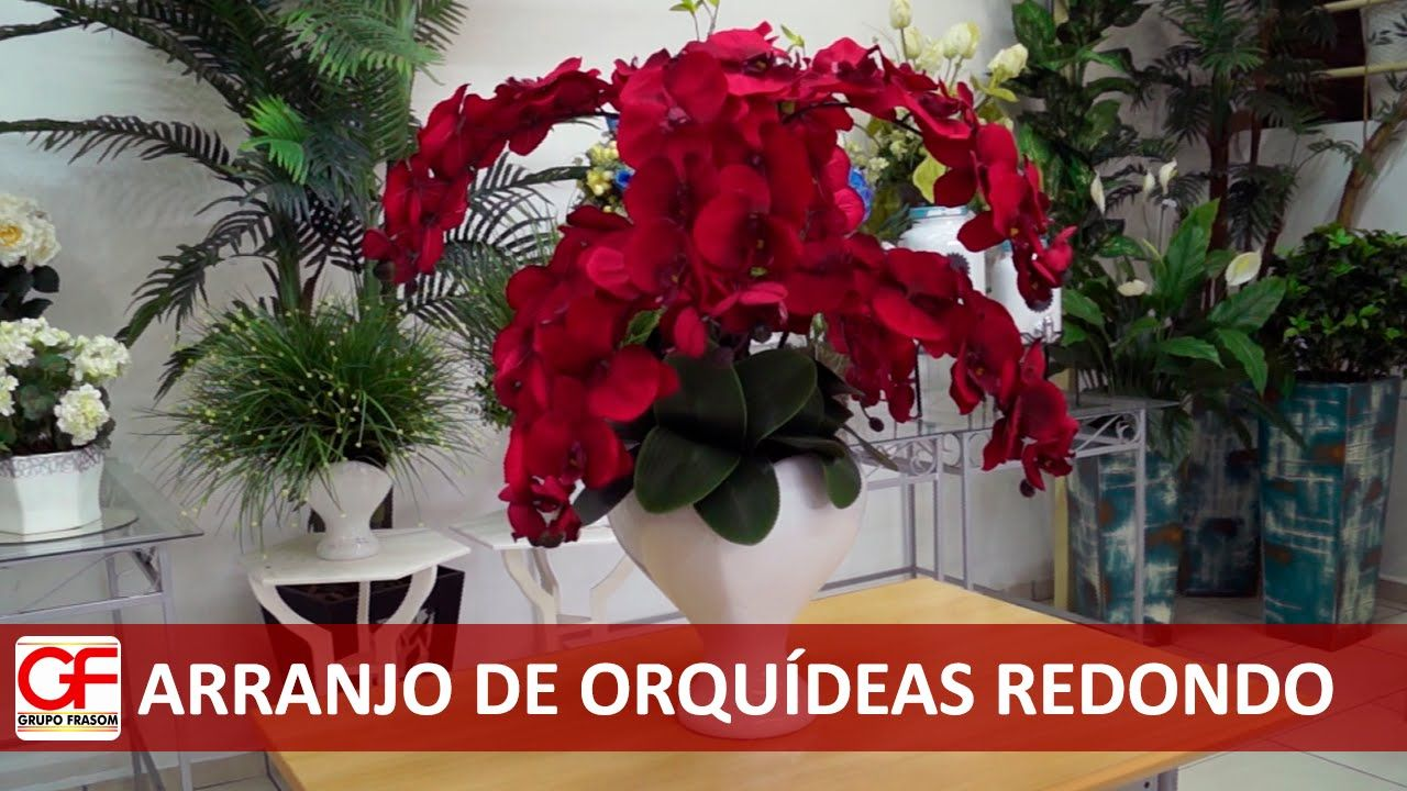 Arranjo De Orquideas Redondo Arranjos De Orquideas Arranjos De