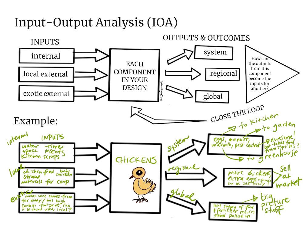 Input Output Analysis In 2020 Permaculture Permaculture Courses Food Forest