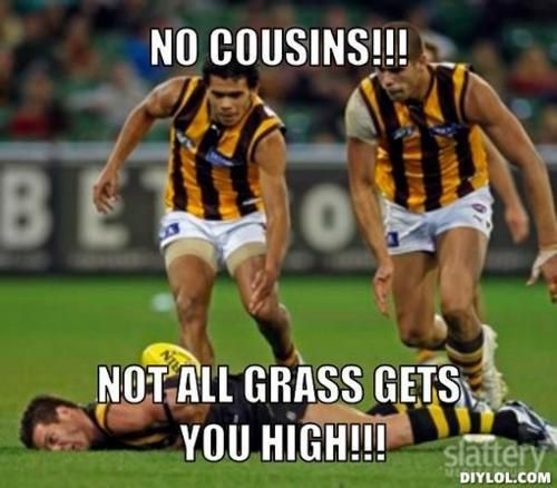 Afl Memes Google Search Golf Humor Funny Football Pictures Afl