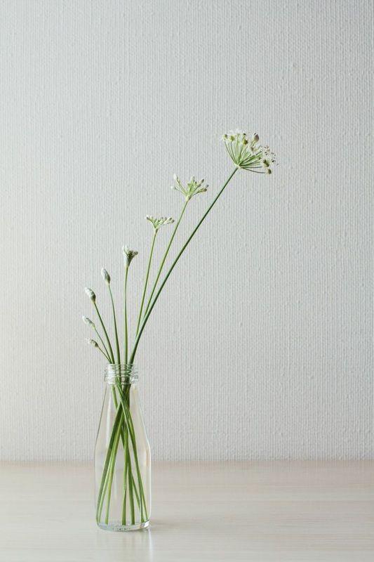 Minimalistic flower arrangement