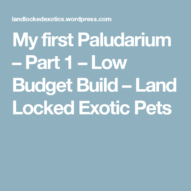 My first Paludarium – Part 1 – Low Budget Build – Land Locked Exotic Pets
