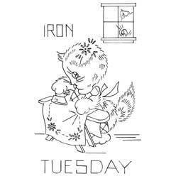 A Kitten a Day - Tuesday
