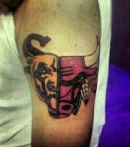 chicago sox bears bulls and hawks it s a